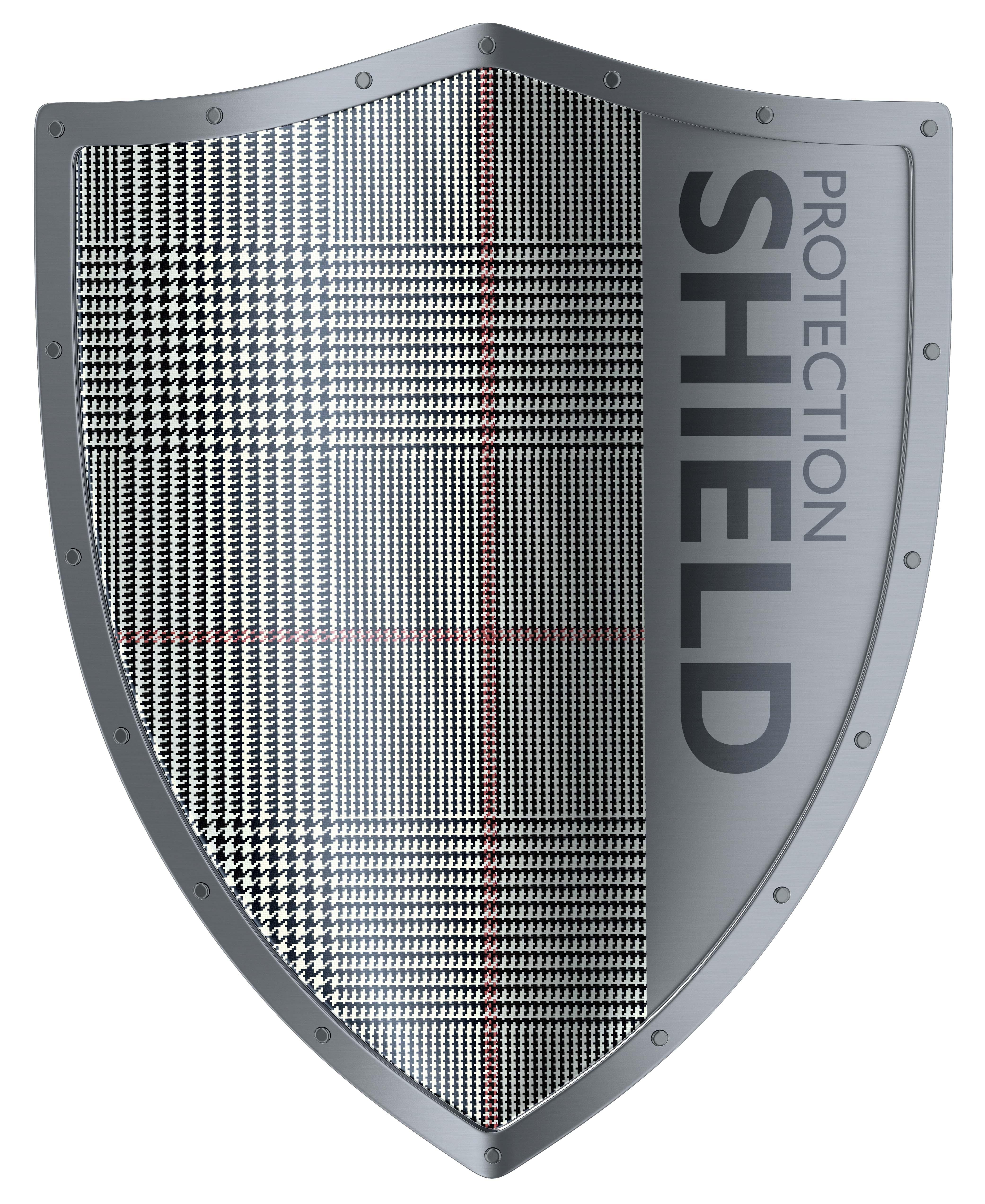 Shield 3d rendering